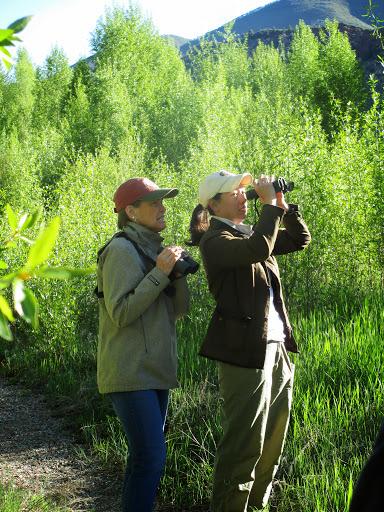 2013.5.31 Maroon Creek Birding by S. Johnson (4)