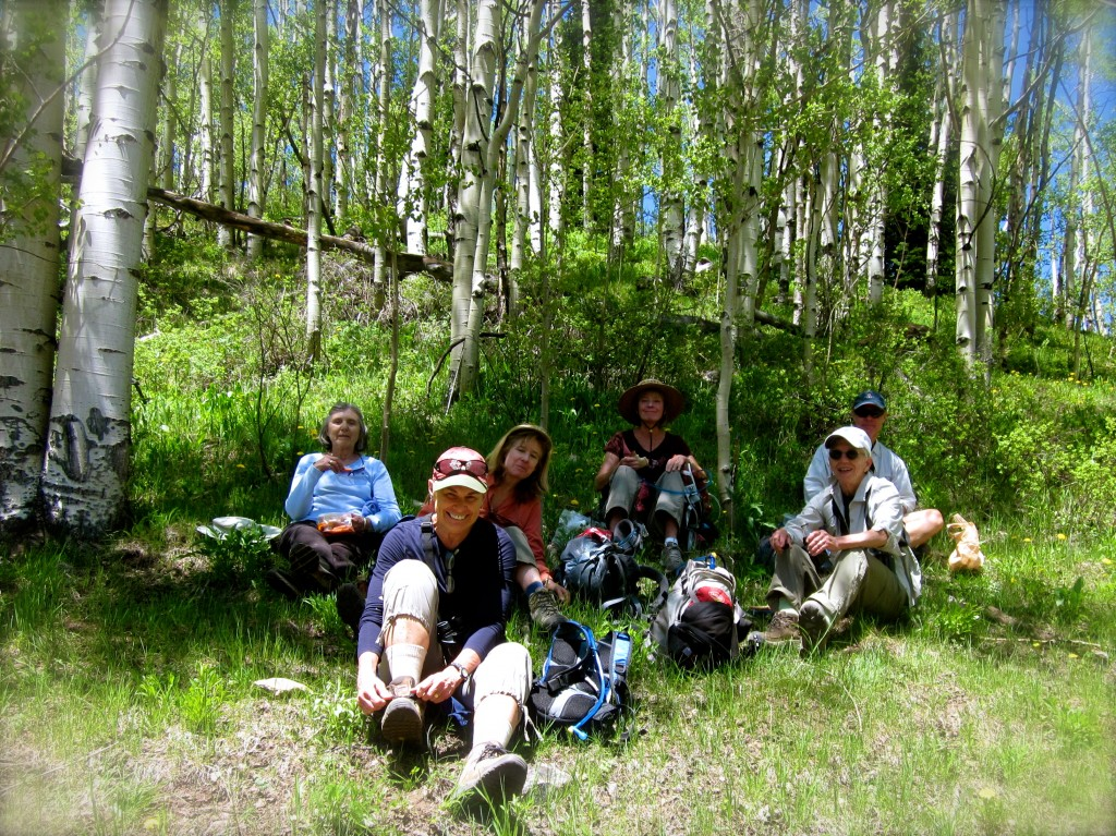 A full-day wildfire and birding field trip.  After a 7am meet-up aty the trailhead, we finally stopped for lunch at 12:30pm. I was thinking about my sandwich by 11am.