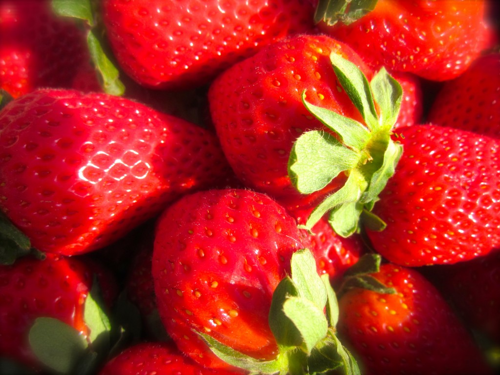 These gorgeous strawberries are finally showing up at our local farmers markets.