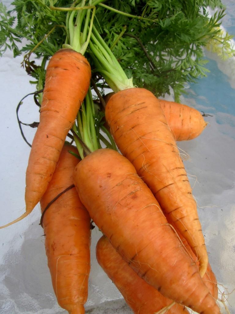 Spiced Butter-Glazed Carrots
