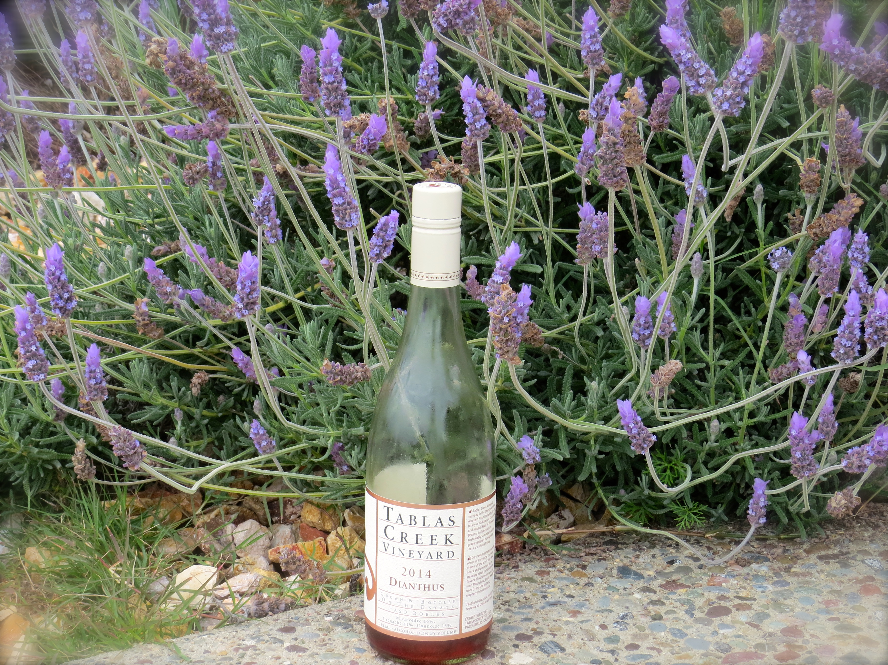 We forced ourselves to drink more wine. This  is a Mourvedre-based dry rosé called Dianthus 2014 by Tablas Creek Vineyard.