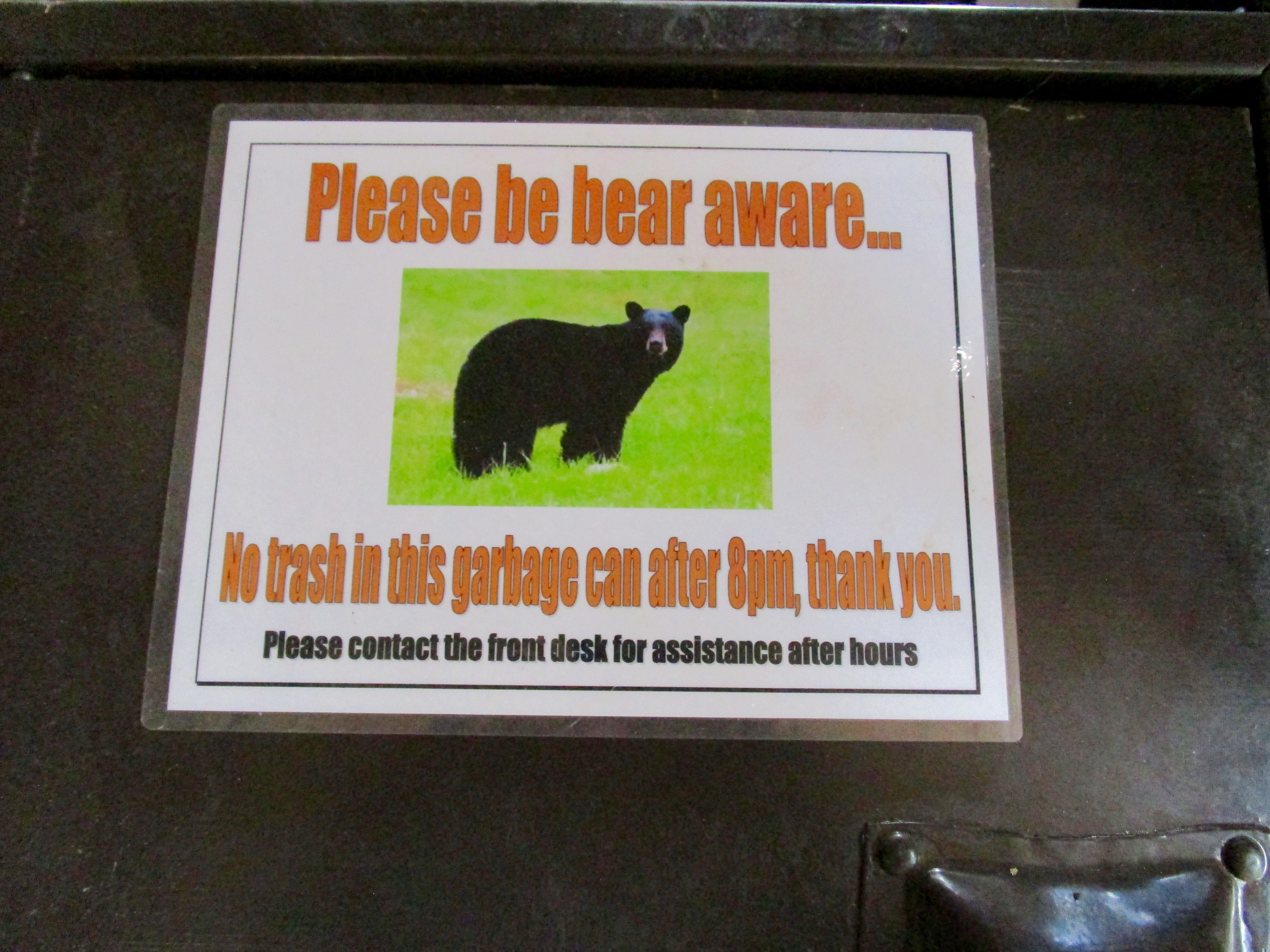 WHAT IS NOT TOTALLY CLEAR ABOUT THIS SIGN WHICH IS POSTED ON TOP OF THE TRASH LID?  A FED BEAR IS A DEAD BEAR.