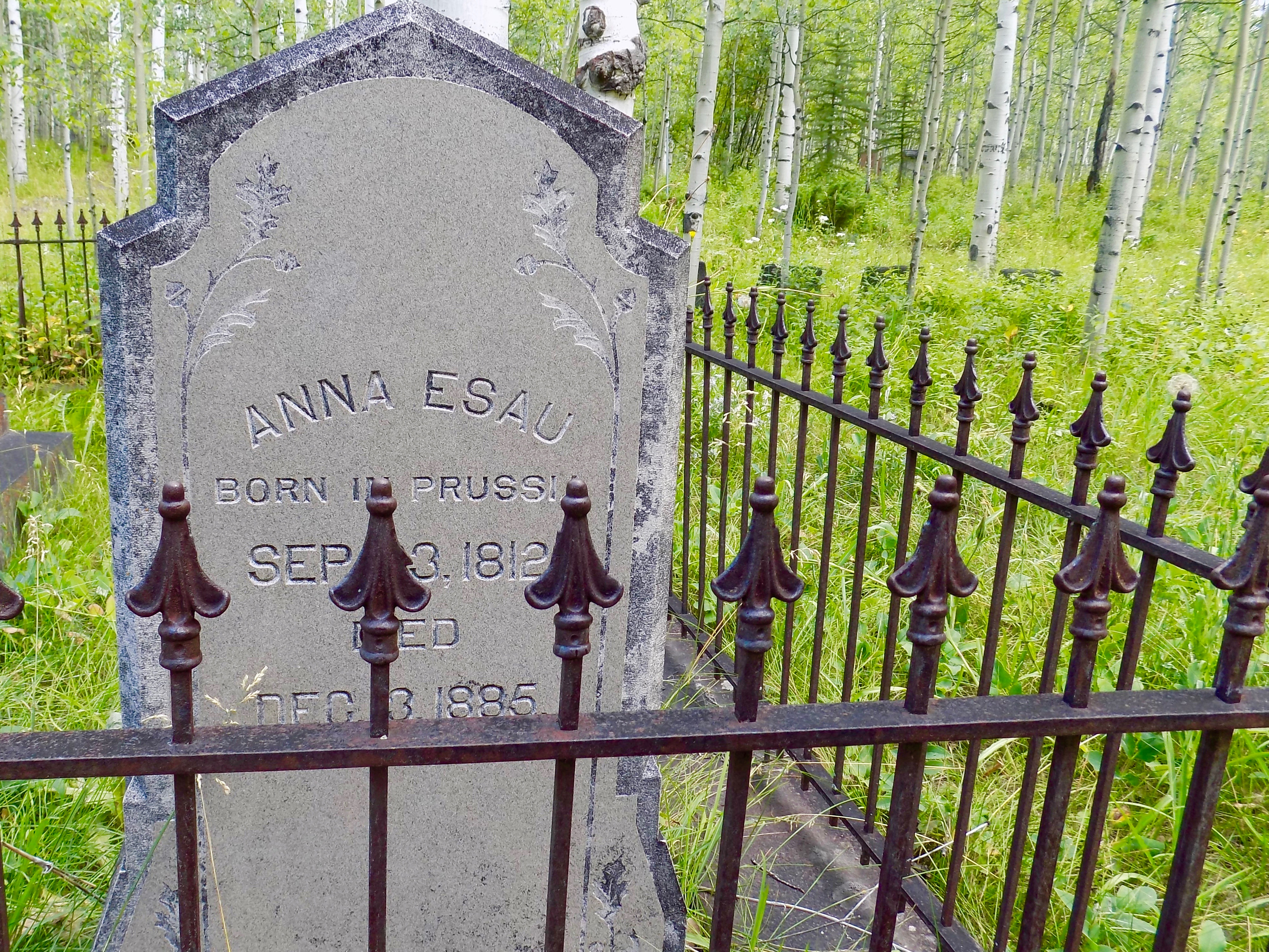 Thinking that our lovable bear lives in nearby Aspen Grove Cemetery,  founded in 1889 and the resting place for Aspen's pioneers and war veterans.